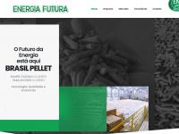 energiafutura.com.br