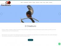 criadourocasabranca.com.br