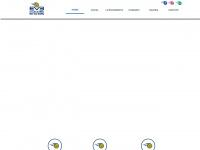 escoladevoleibernardinho.com.br