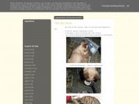 amorporpatinhas.blogspot.com