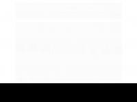 analiseinformatica.com.br
