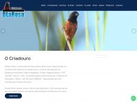 criadourodlarosa.com.br