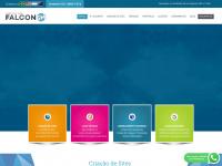 Criação de Sites Porto Alegre | Falcon5M Agência Web