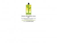 estudiochanceler.com.br