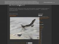 arkimagem.blogspot.com