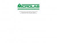 microlabpb.com.br
