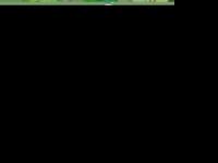 magnetismotimes.com