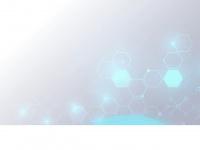 dominisolo.com.br