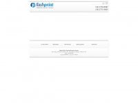 flashprint.com.br