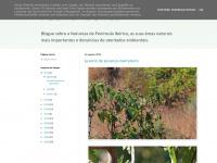 faunaiberica.blogspot.com