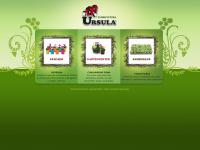 floriculturaursula.com.br
