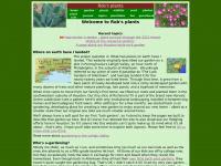Robsplants.com - Rob's plants
