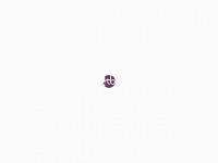 Criação de Sites Personalizados e Responsivos em São Paulo - STB Editora
