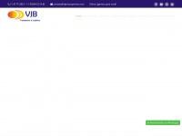 vjbtransportes.com