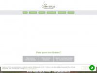 giovanazseguros.com.br