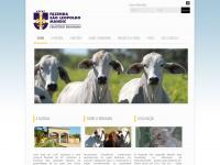 fslmandic.com.br