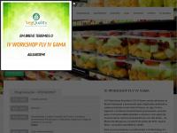 flvsolucao.com.br