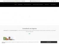 witbrokers.com.br