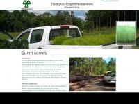 trianguloflorestas.com.br