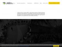 LAIOB - Latin America Institute of Business