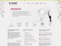 tricem.com