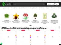 plantei.com.br