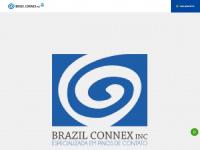 Brazilconnex.com.br - Agulhas de teste, pontas de teste, pontas de prova, e muito mais!