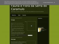 faunaefloradocaramulo.blogspot.com