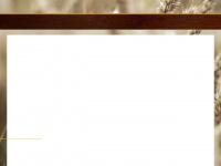 newbread.com.br