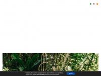 medsystems.com.br
