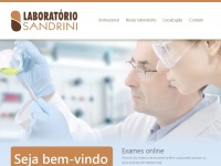 laboratoriosandrini.com.br