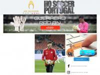 hogloves.com