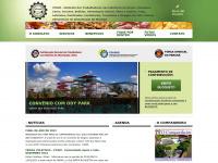 stiammaringa.com.br