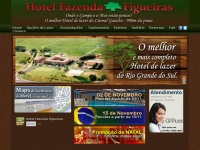 hotelfazendafigueiras.com