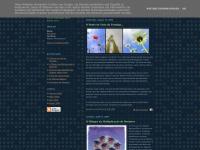 barrakaloka.blogspot.com