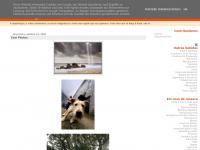 Mini Sagres On-line