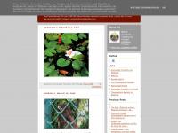ramolotusbranco.blogspot.com