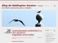 Blog de Wellington Saraiva | Temas de Direito explicados para cidadãs e cidadãos