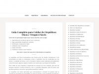 Como cuidar de orquídeas - Clique Agora! Dicas Imperdíveis.