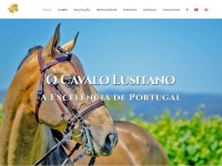 Centroequestrevaledolima.com - Centro Equestre Vale do Lima