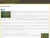 reforma-agraria-no-brasil.info