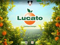 citricolalucato.com.br