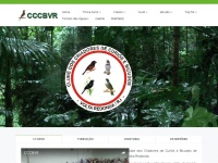 cccbvr.com.br
