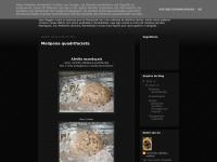 recantoabelhanativa.blogspot.com