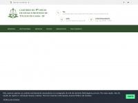 9oficiogama.com.br