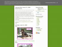 adopcoesdocanilmunicipaldoseixal.blogspot.com