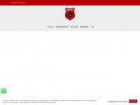 cepavcurso.com.br