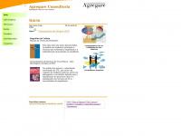 agregareconsultoria.com.br