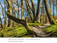 Timberlandshoes.ch - Timberland Shoes | Timberland Billig