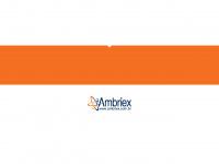 ambriex.com.br